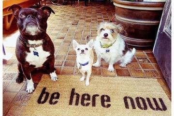 be here now mantra doormat