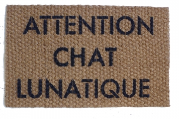 ATTENTION CHAT LUNATIQUE crazy cat door mat french cat lady doormat doormatt