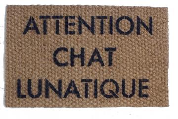 ATTENTION CHAT LUNATIQUE crazy cat door mat french cat lady doormat doormatt