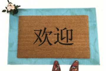 MANDARIN Chinese Welcome Huan Ying
