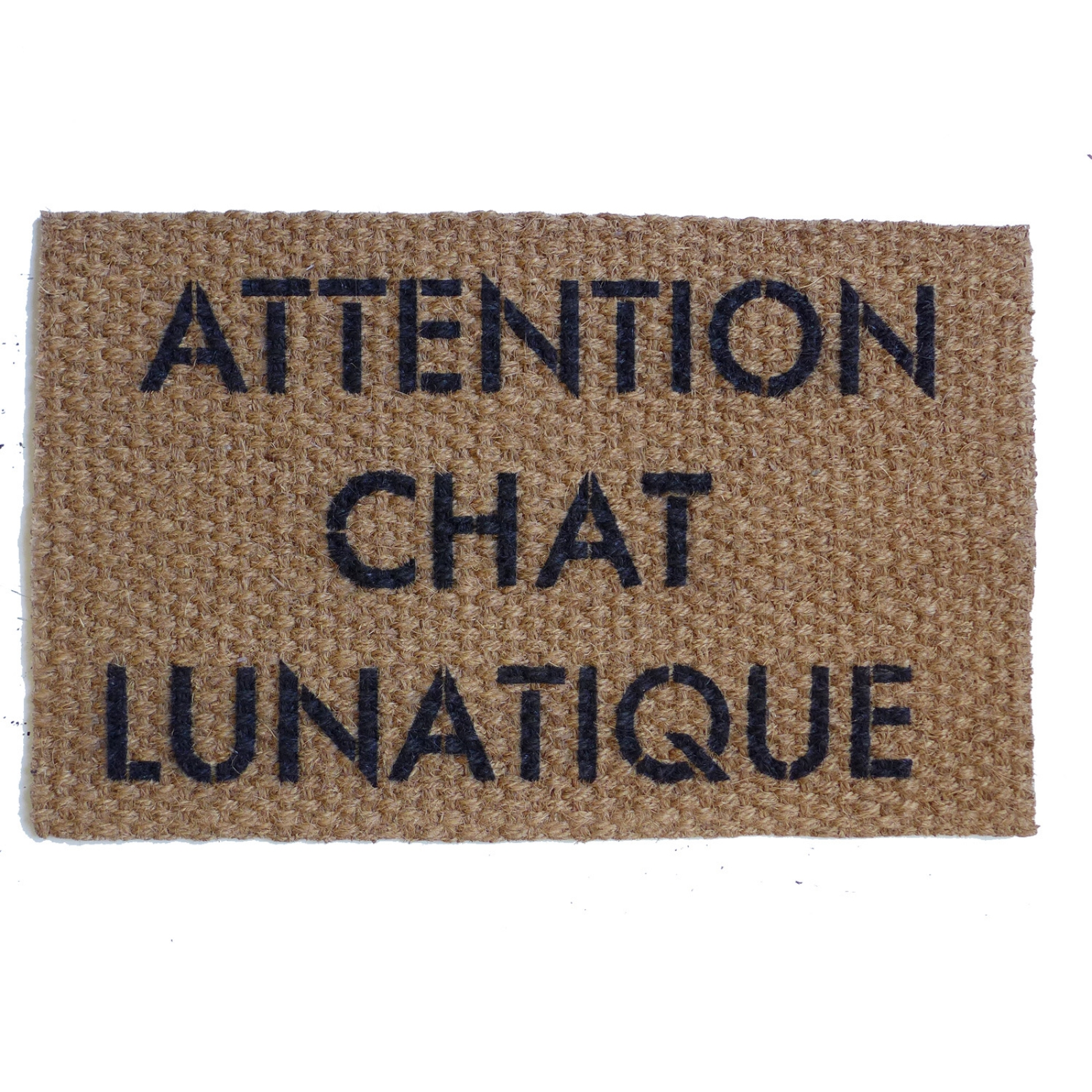 Attention Chat Lunatique French Crazy Cat Doormat Damn