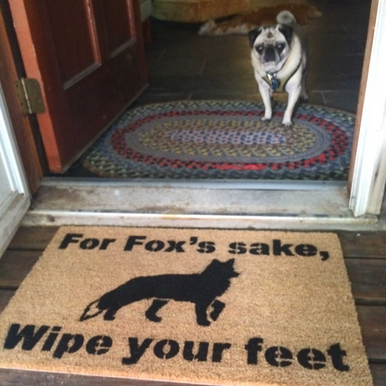 For Fox S Sake Wipe Your Feet Damn Good Doormat Damn