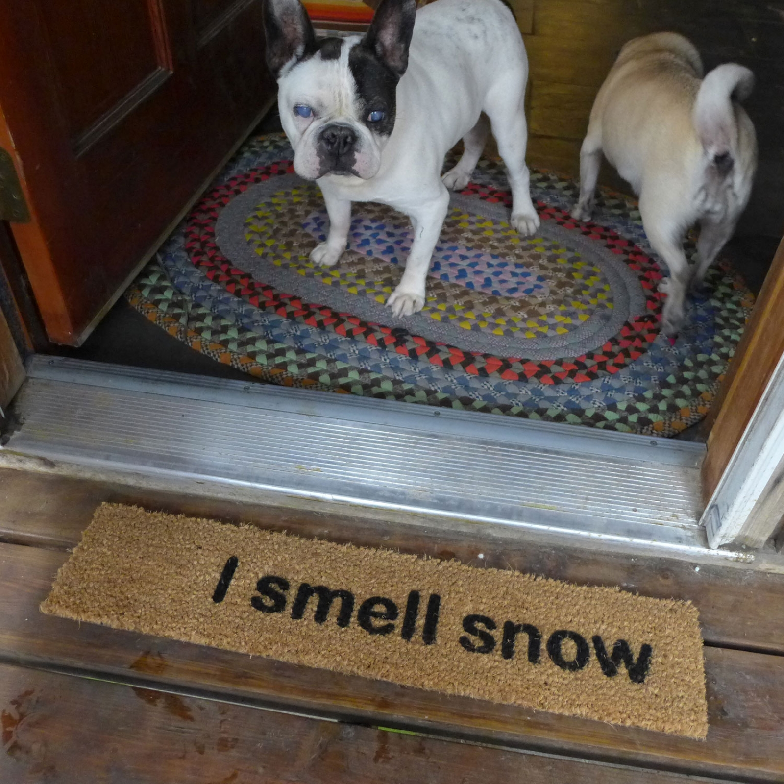 I Smell Snow Gilmore Girls Funny Winter Doormat Meme