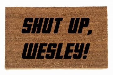 Shut up Wesley!  Star Trek doormat
