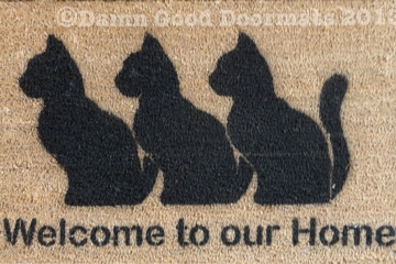 Welcome to our home cats